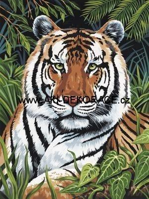 Tygr,v,trávě,Malování,podle,čísel,