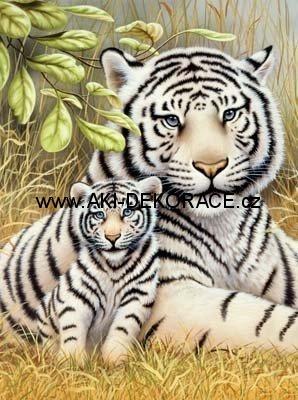 Tygr,matka,s,mládětem,Malování,podle,čísel,