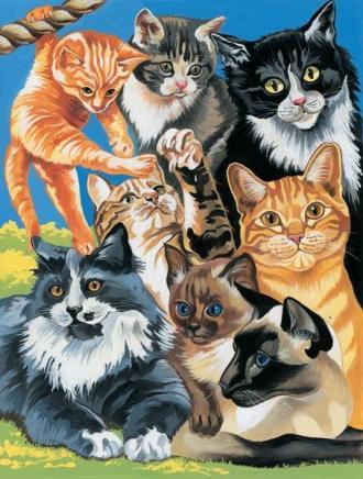 Kočičí svět,Malování,podle,čísel,