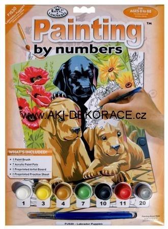 Psi,Malování,podle,čísel,